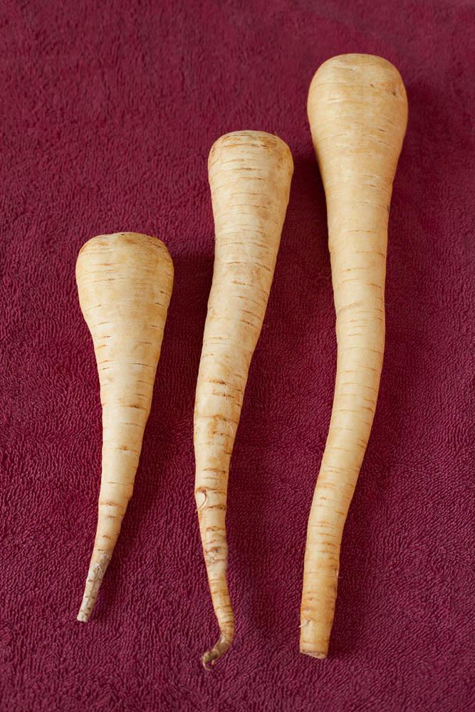 Foto di tre radici di pastinaca sativa