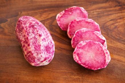 Foto di una patata Rossa delle Fiandre
