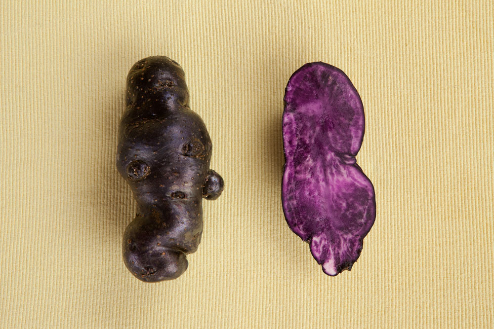 Foto di patata vitelotte nera