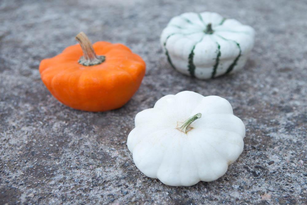 Foto di tre zucchine patissone